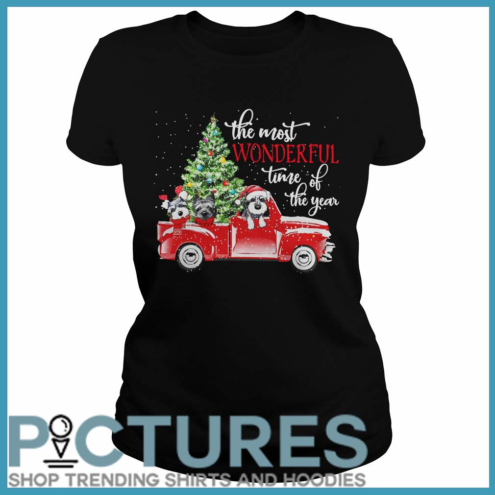The most wonderful time of the year Dog Christmas Ladies tee