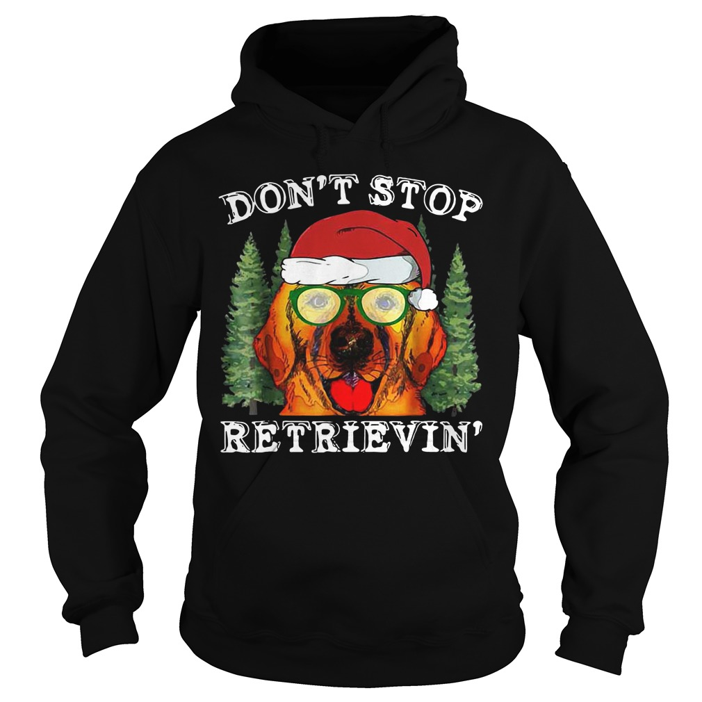 Dog don't stop retrievin' hoodie
