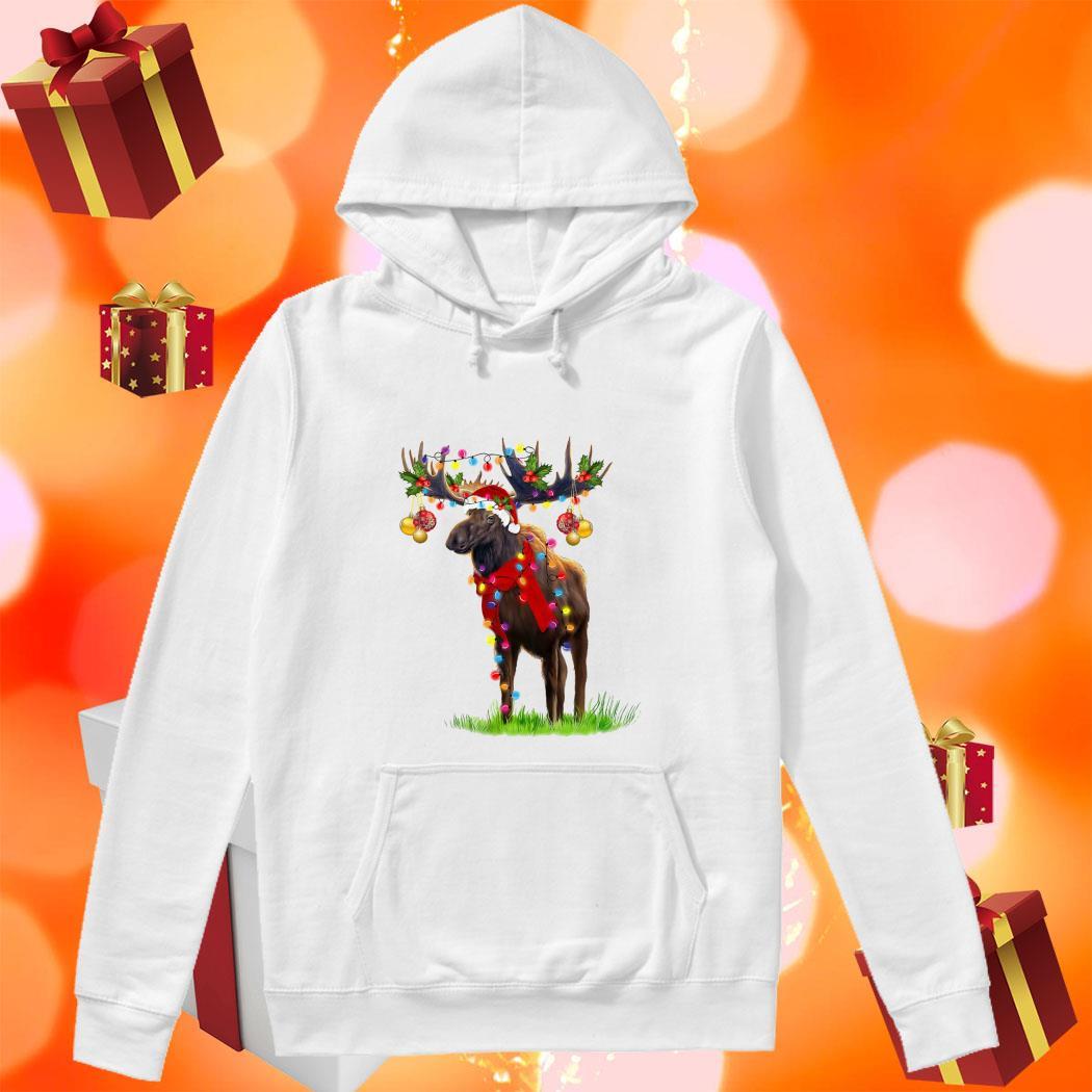 Reindeer Light Merry Christmas hoodie